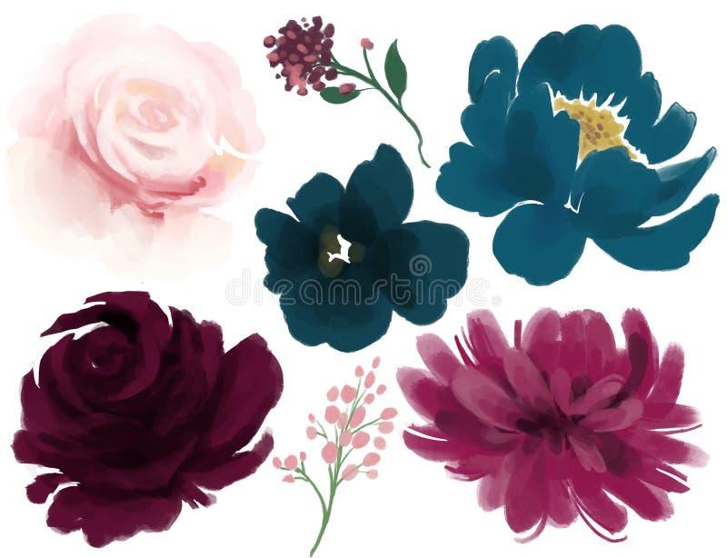 Aquarellblumenpfingstrosenrosen- und Blätter marsala Marineblaurosa stock abbildung