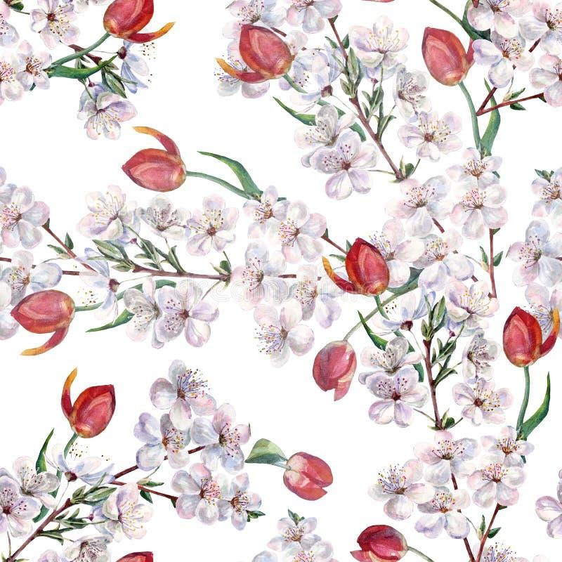 Aquarellblumenstrauß blüht Tulpe mit Kirsche Nahtloses Muster auf einem weißen Hintergrund vektor abbildung