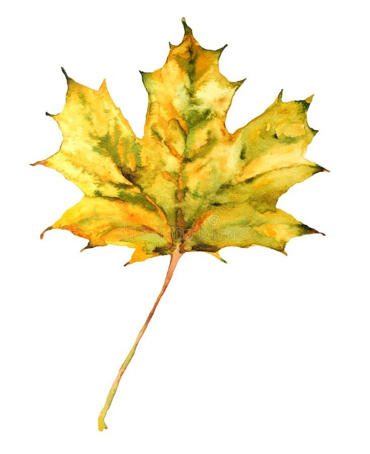 Feuille d'automne illustration stock