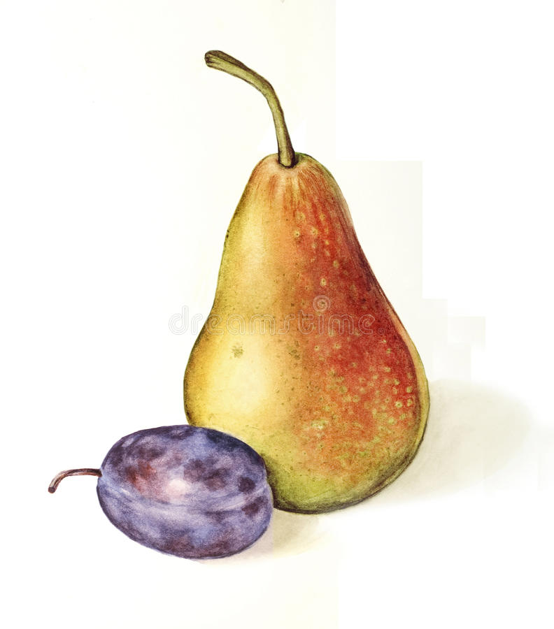 Prune et poire image stock