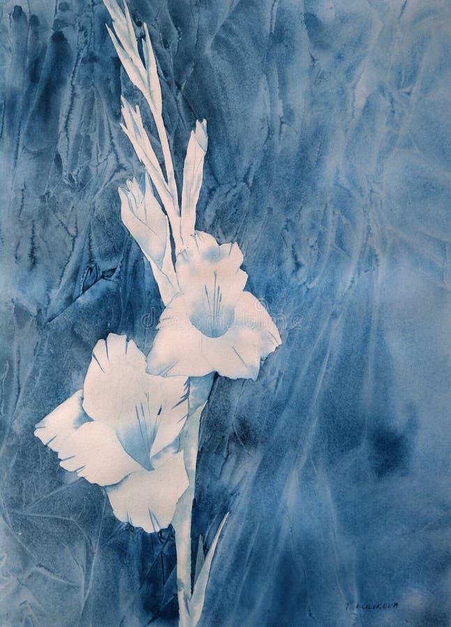 Download Aquarelle Blanche De Gladiolus Illustration Stock - Illustration du indigo, bleu: 2140911