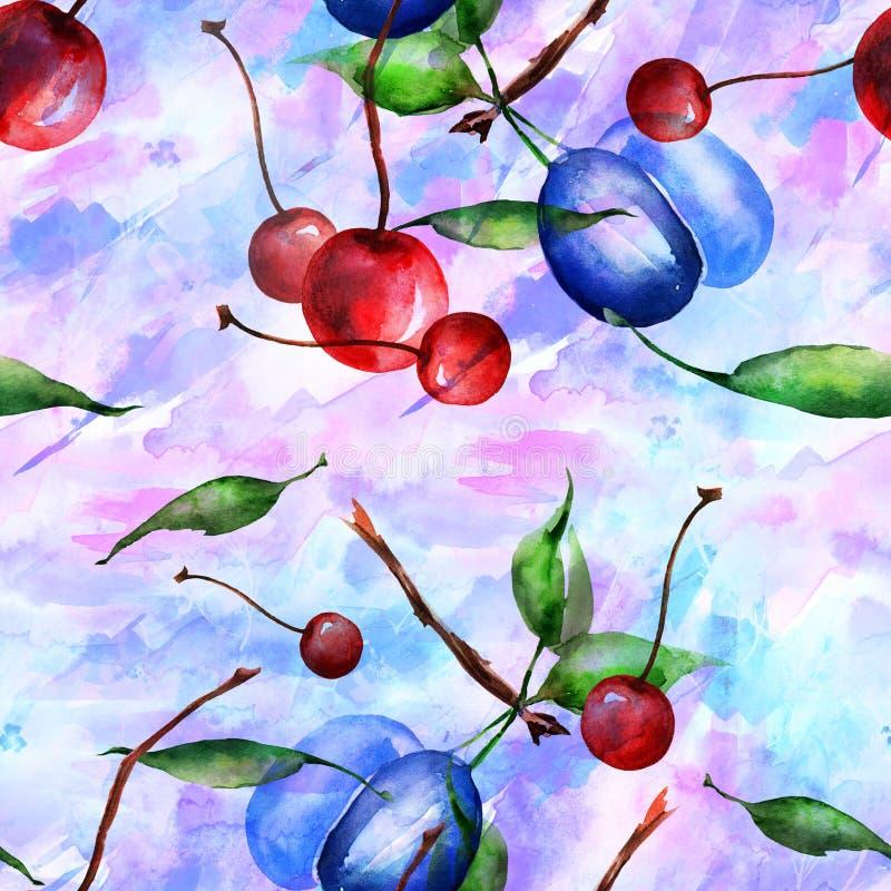 Aquarelle, cru, modèle sans couture - branche de prune, baie de cerise, feuille Prunes de brin avec des feuilles illustration de vecteur