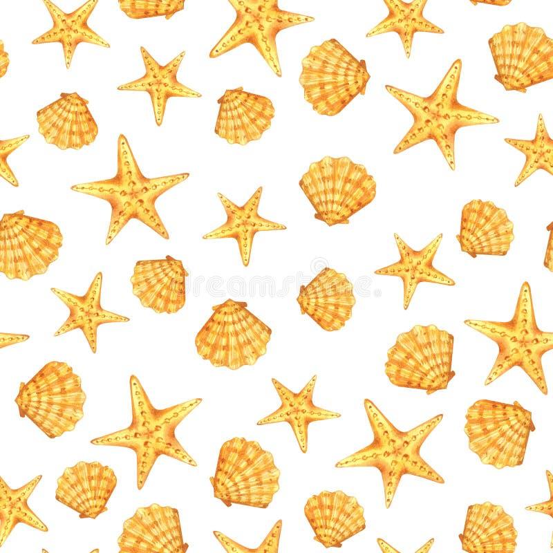 Aquarelle de coquille d'étoiles de mer de mer illustration stock
