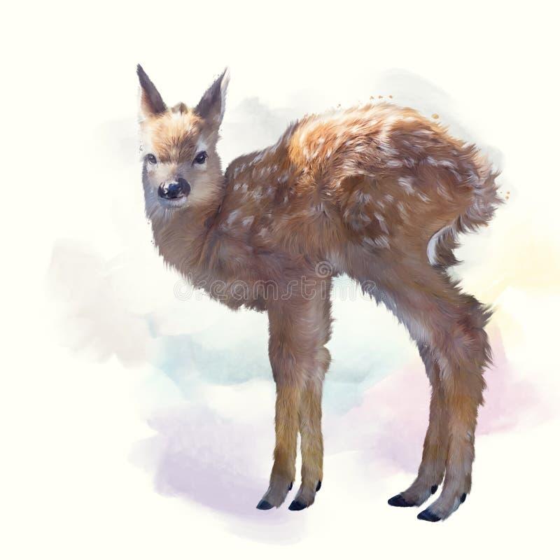 Aquarelle de faon de cerfs de Virginie images libres de droits