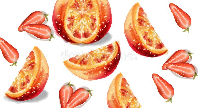 Aquarelle de vecteur de fruits de tranches d'orange et de fraise illustration stock