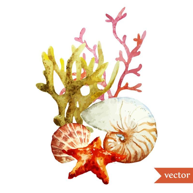 Aquarelle, mer, corail, coquille illustration stock
