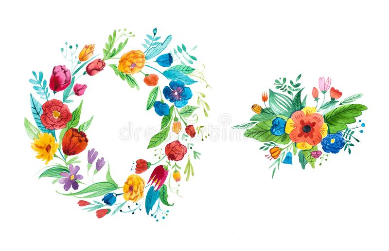 Aquarelle rysunek jaskrawy nieociosany coronet ogród kwitnie pociągany ręcznie royalty ilustracja