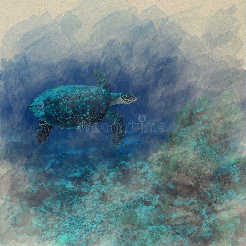 Aquarelle sous-marine d'océan d'espèce marine de Cora Reef Sea de tortue de mer illustration libre de droits