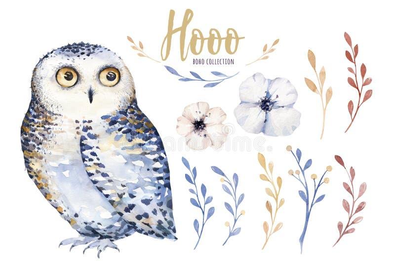 Aquarelleule mit Blumen und Feder Übergeben Sie gezogene lokalisierte Illustration mit Vogel in boho Art Kindertagesstätte bedruc stock abbildung