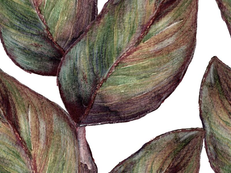 Aquarellfarben Nahtloses Muster lizenzfreie stockbilder
