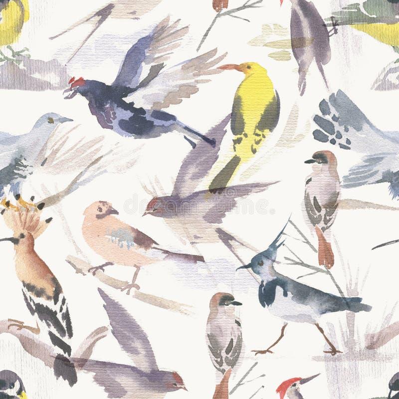 Aquarellfarbenes nahtloses Muster für verschiedene Vögel Handgezeichnete Abbildung lizenzfreie stockfotografie