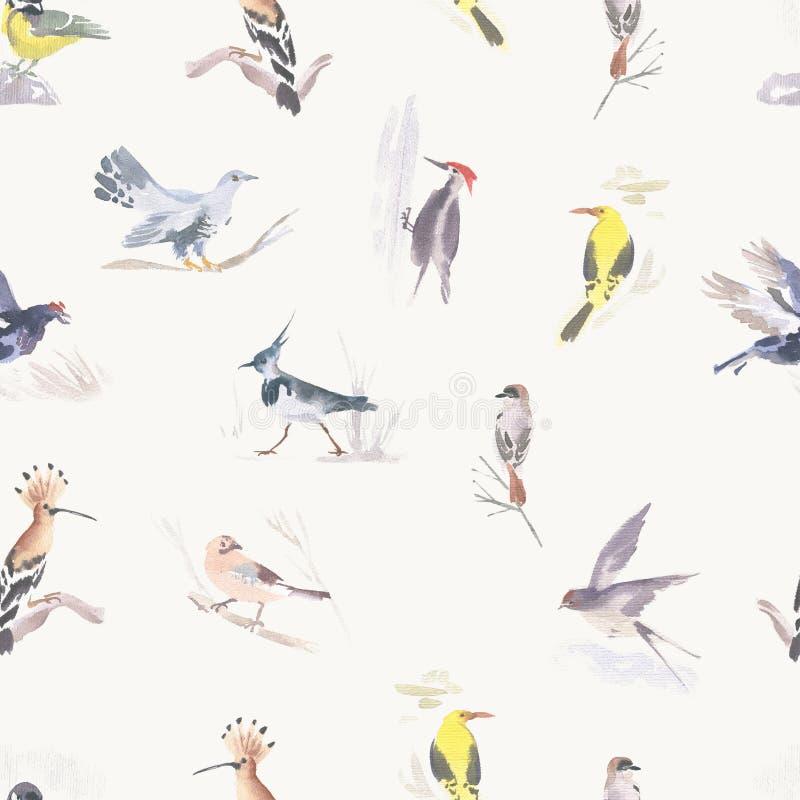 Aquarellfarbenes nahtloses Muster für verschiedene Vögel Handgezeichnete Abbildung stockfoto