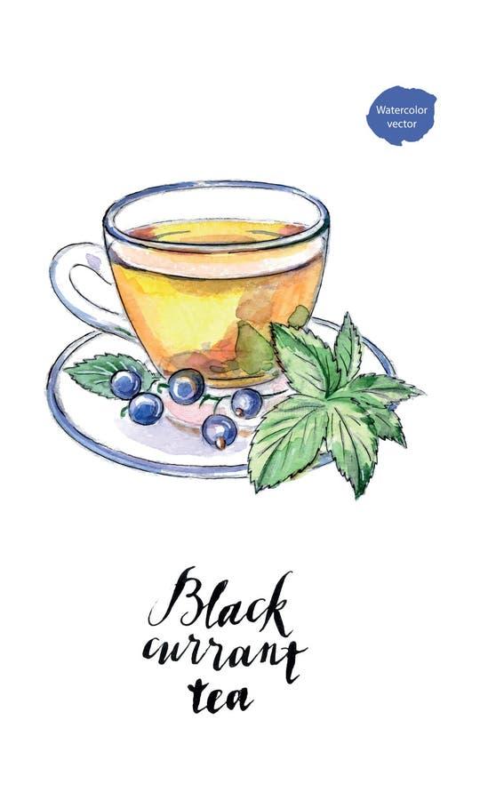 Aquarellglasschale Tee der Schwarzen Johannisbeere lizenzfreie abbildung