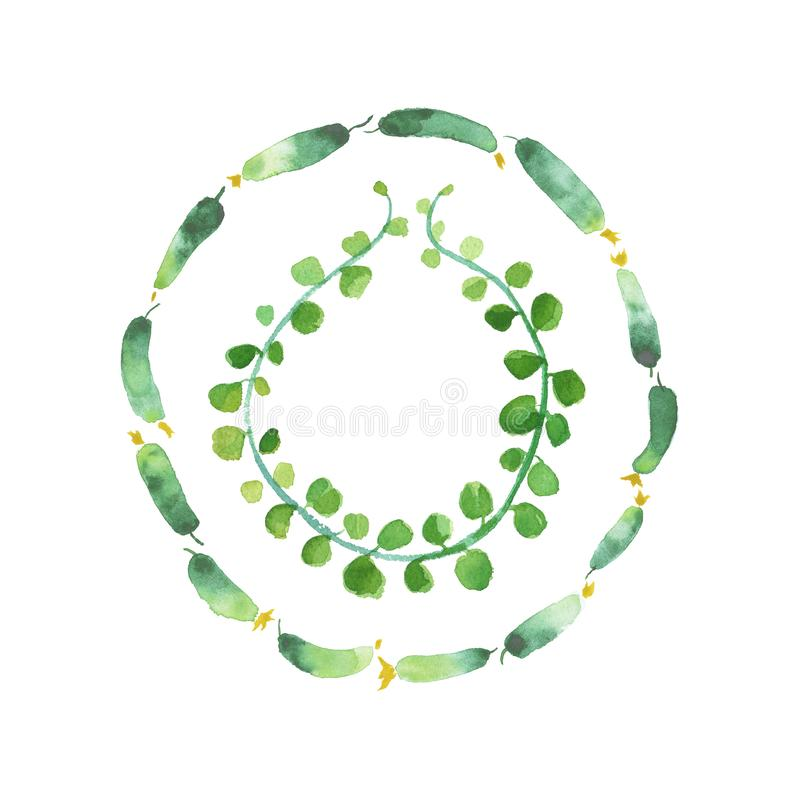 Aquarellgurken, die Kunst, Gemüserestaurantfahnenhintergrund malen lizenzfreie abbildung