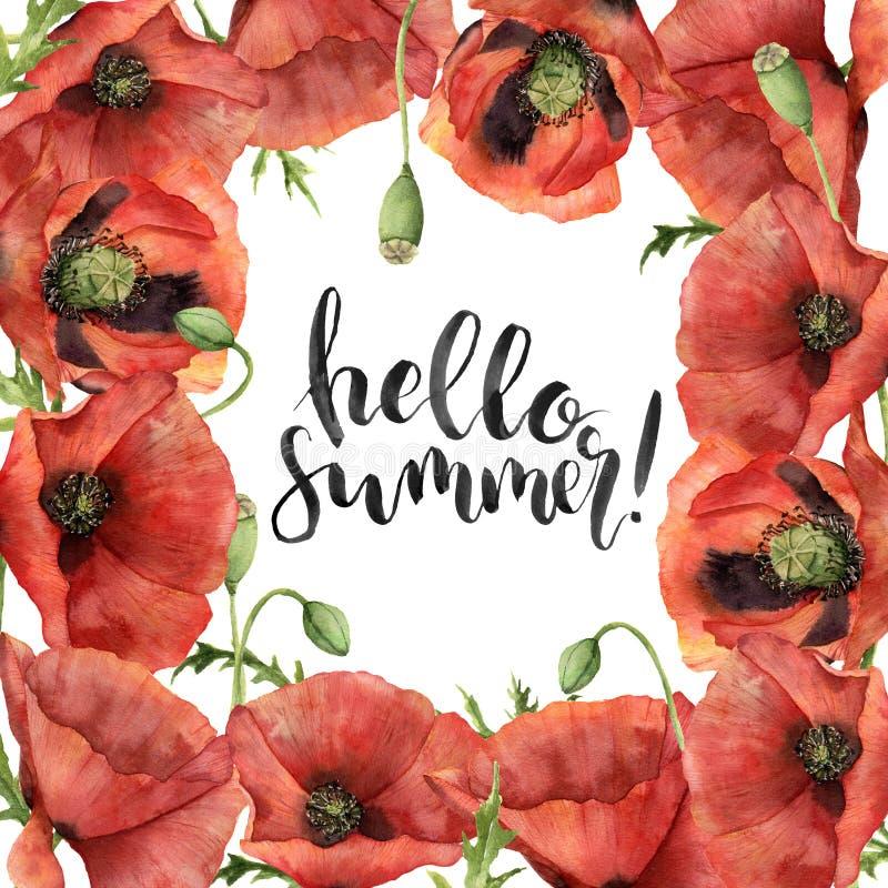 Aquarellhallo Sommerkarte Handgemalte Blumengrenze mit den Mohnblumenblumen, Blättern, Samenkapsel und Niederlassungen lokalisier lizenzfreie abbildung