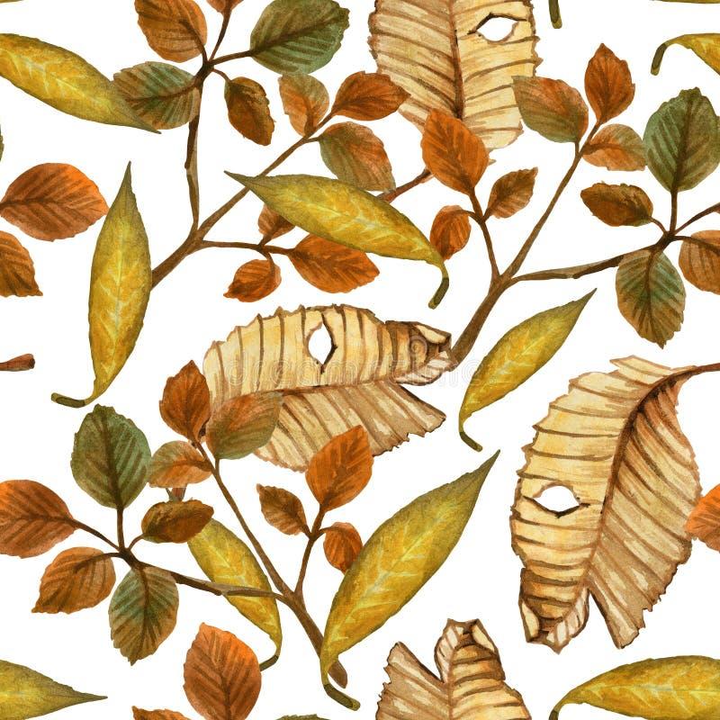 Aquarellherbstmuster von gelb gefärbten Blättern stock abbildung