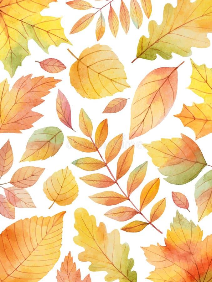 Aquarellherbstvektorkarten-Schablonendesign von den Blättern und von Niederlassungen lokalisiert auf weißem Hintergrund lizenzfreie abbildung