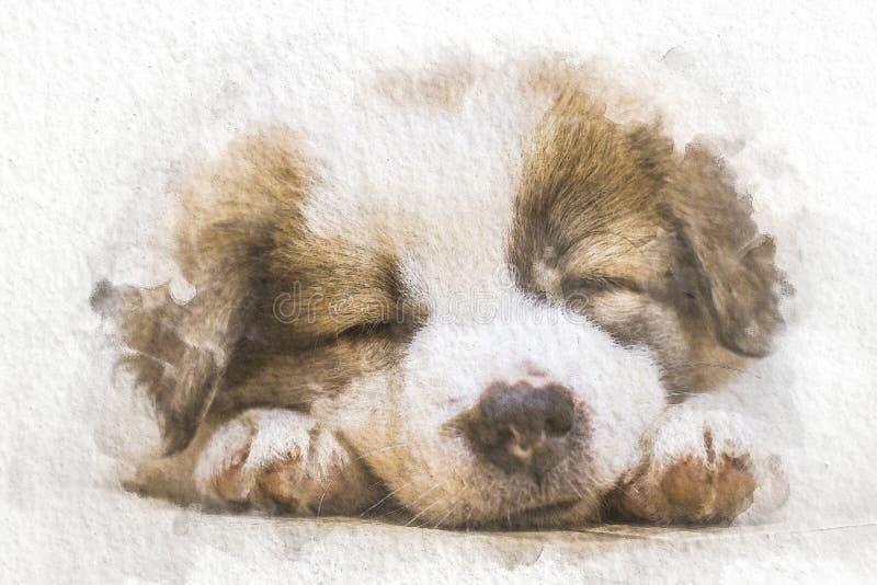 Aquarellhund, der auf Boden mit abstrakter Farbe auf Weißbuchhintergrund schläft Malerei der schönen Grafik vektor abbildung