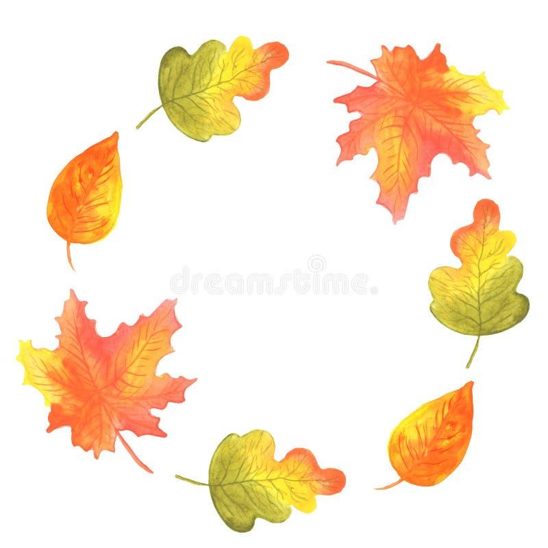 Aquarellillustration eines runden Rahmens des Herbstlaubs von roten orange Schatten des Eichenbirkenahorns lizenzfreie abbildung