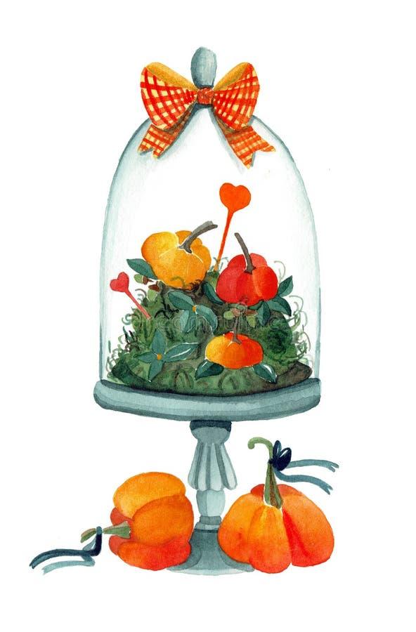Aquarellillustration von boho Kürbisen stock abbildung