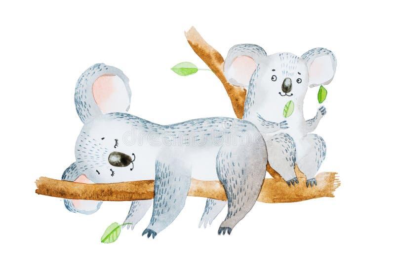 Aquarellillustration von zwei entzückenden Karikaturkoalabären, die auf Eukalyptusbaumast sitzen lizenzfreie abbildung