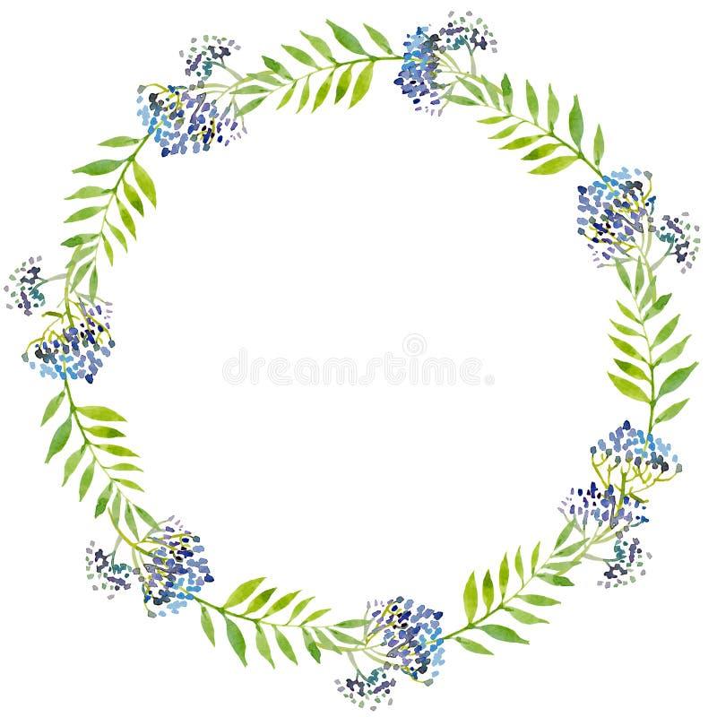 Aquarellillustrationskranz, grüne Blätter und blaue Niederlassungen vektor abbildung