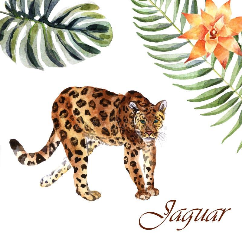 Aquarelljaguar lokalisiert auf einem weißen Hintergrund lizenzfreie abbildung