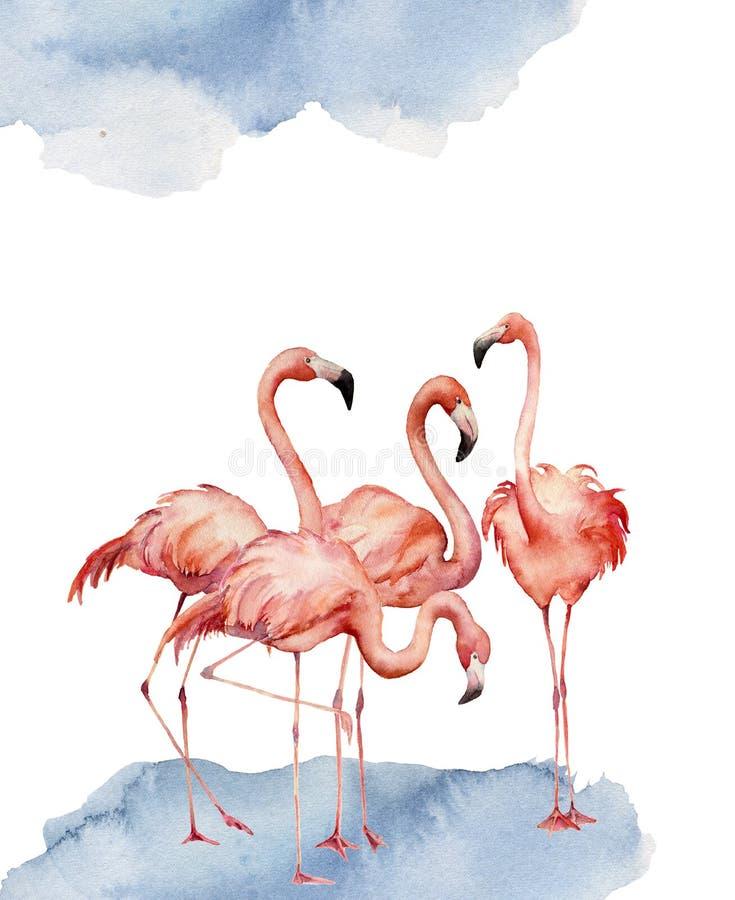 Aquarellkarte mit Tanzenflamingo Handgemalter Druck mit dem exotischen Vogel lokalisiert auf weißem Hintergrund tropisch lizenzfreie abbildung