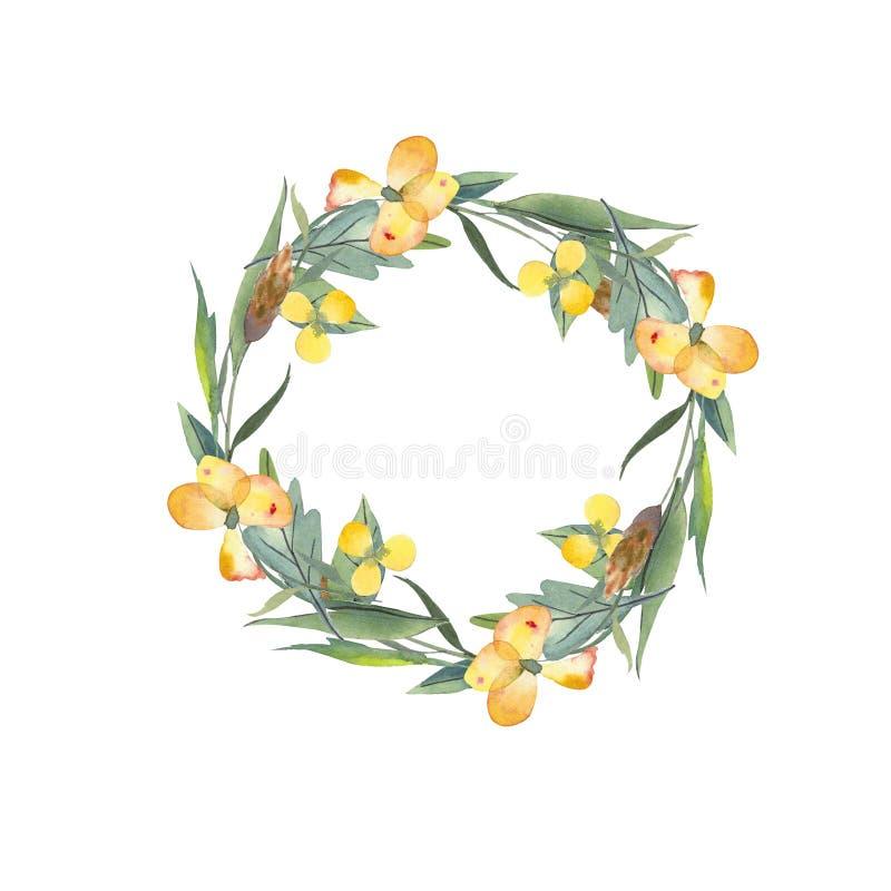 Aquarellkranz von Blättern, Kräuter, Blumen, Butterblumeen, Ährchen Abbildung getrennt auf wei?em Hintergrund vektor abbildung