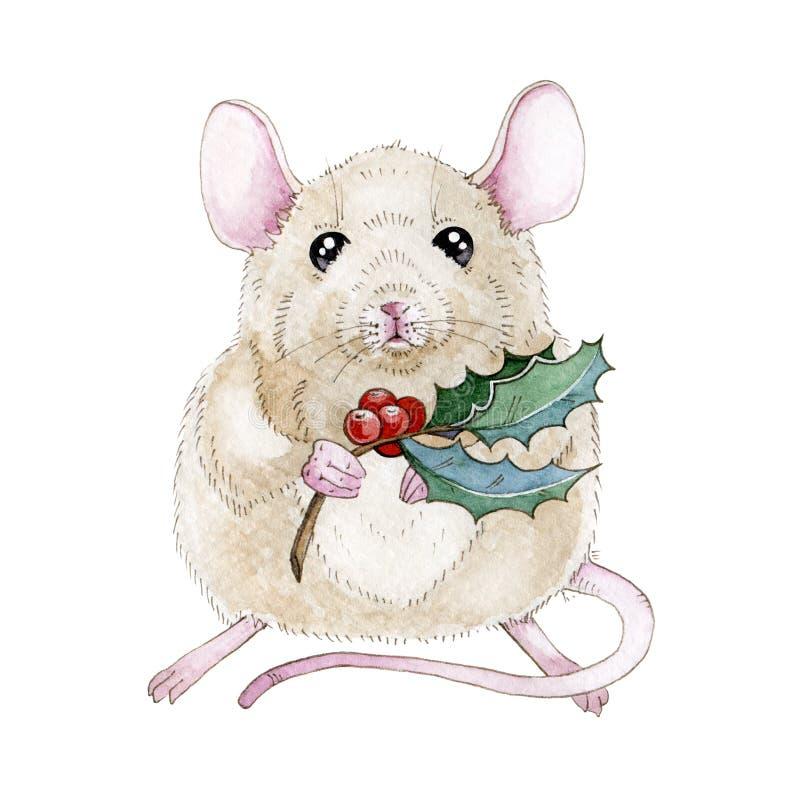 Aquarellmäuse- oder -rattenillustration mit netter Weihnachtsstechpalmenniederlassung Nette kleine Maus ein simbol chinesische de lizenzfreie abbildung