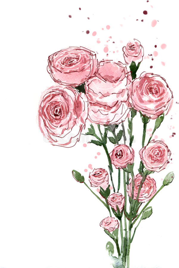 Aquarellmalereiblumensträuße Blumen-Gartennelkenrosa stock abbildung