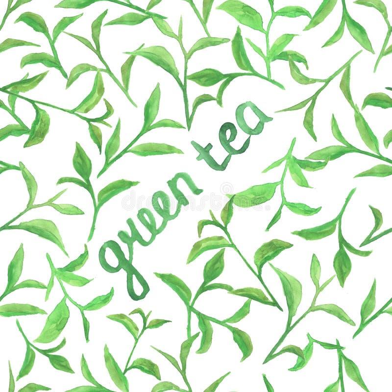 Aquarellmuster mit grünen Teeblättern lizenzfreie stockbilder