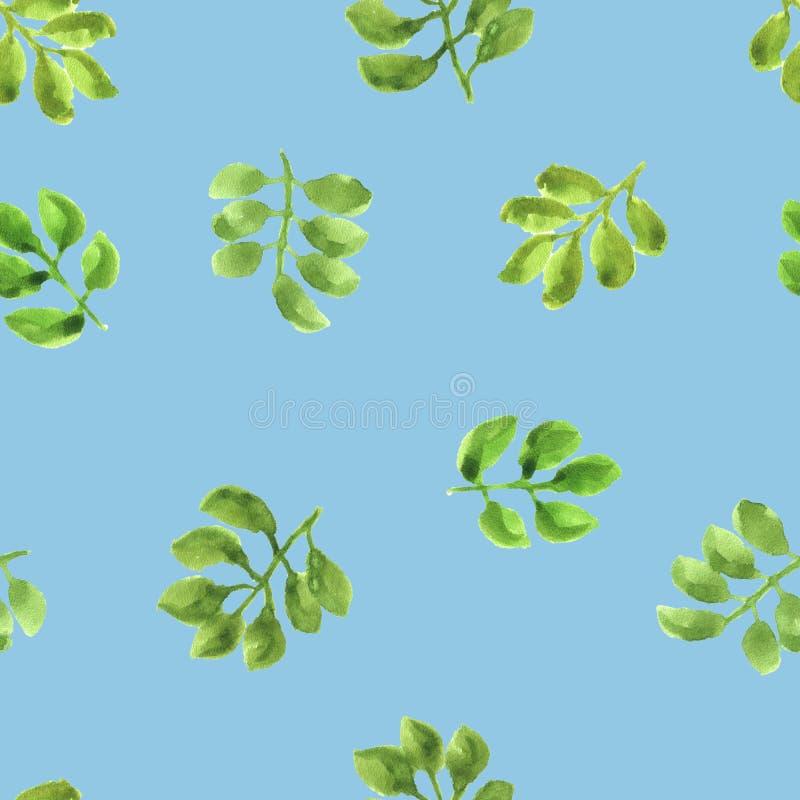 Aquarellmuster mit lokalisierten grünen Blättern lizenzfreie stockbilder