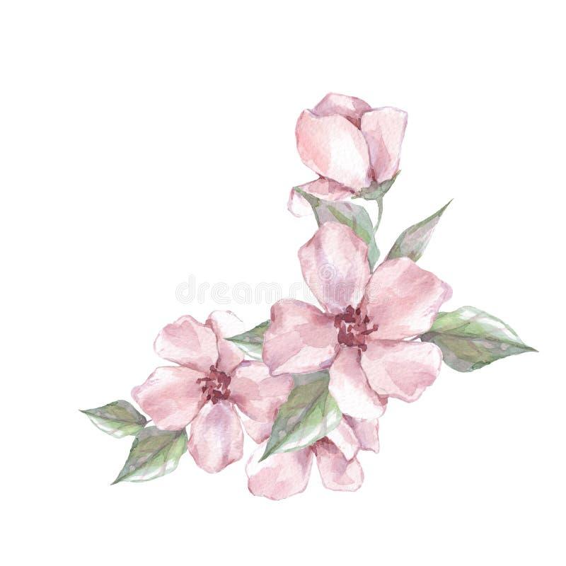 Aquarellniederlassung mit Blumen lizenzfreie abbildung