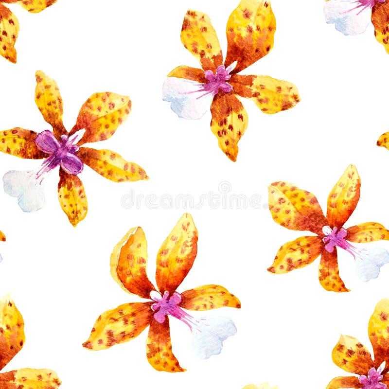 Aquarellorchidee blüht tropisches Muster vektor abbildung
