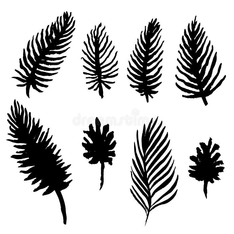 AquarellPalmeblätter eingestellt Schwarzweiss-Wedelsammlung Vektorabbildung getrennt auf weißem Hintergrund stock abbildung