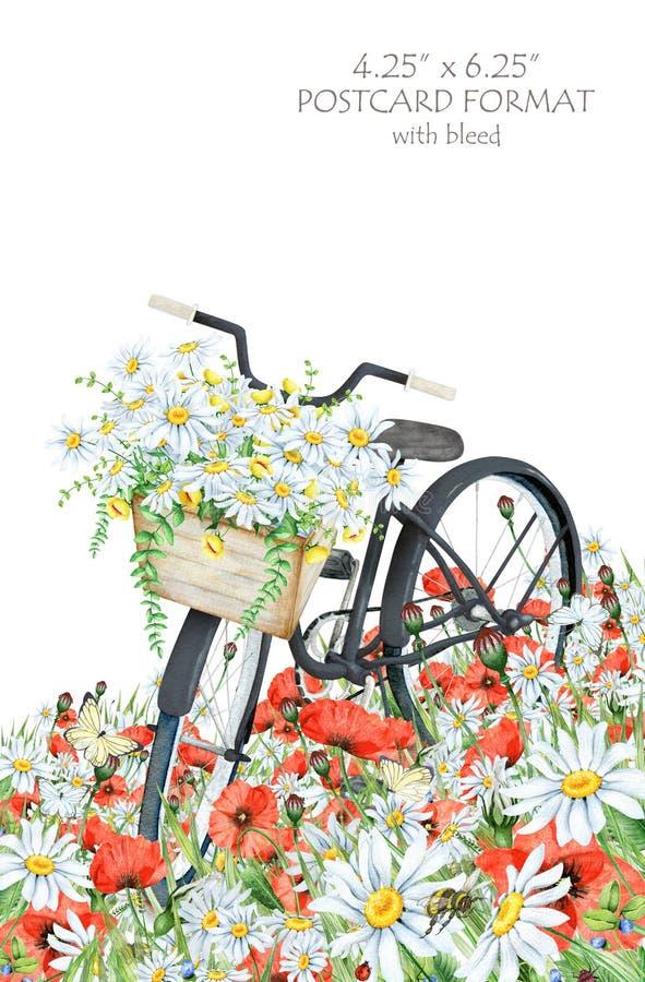 Aquarellpostkartenschablone mit schwarzem Fahrrad- und Blumenkorb stock abbildung
