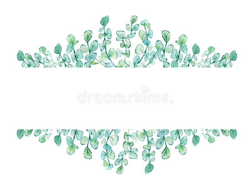 Aquarellrahmen mit Blumen mit Eukalyptusniederlassungen stock abbildung