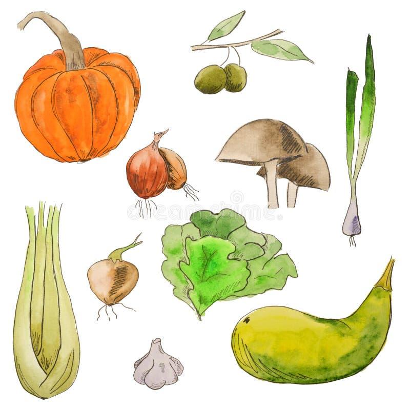 Aquarellsatz Gemüse Helle Arten der gesunden Nahrung Vegetarische Nahrung stock abbildung