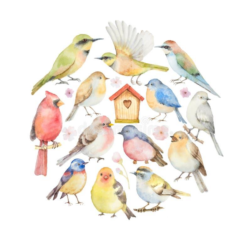 Aquarellsatz von Vögeln und von Vogelhaus in Form eines Kreises vektor abbildung