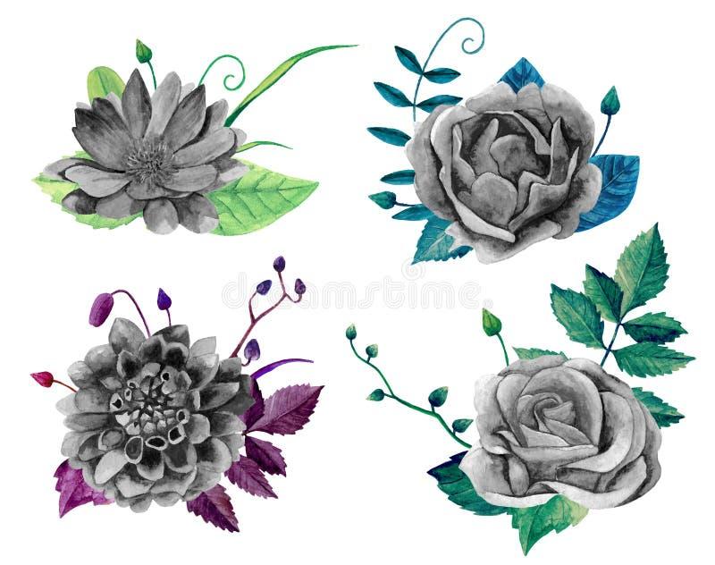 Aquarellschwarzweiss-Blumen-Blumenstraußvektor stock abbildung
