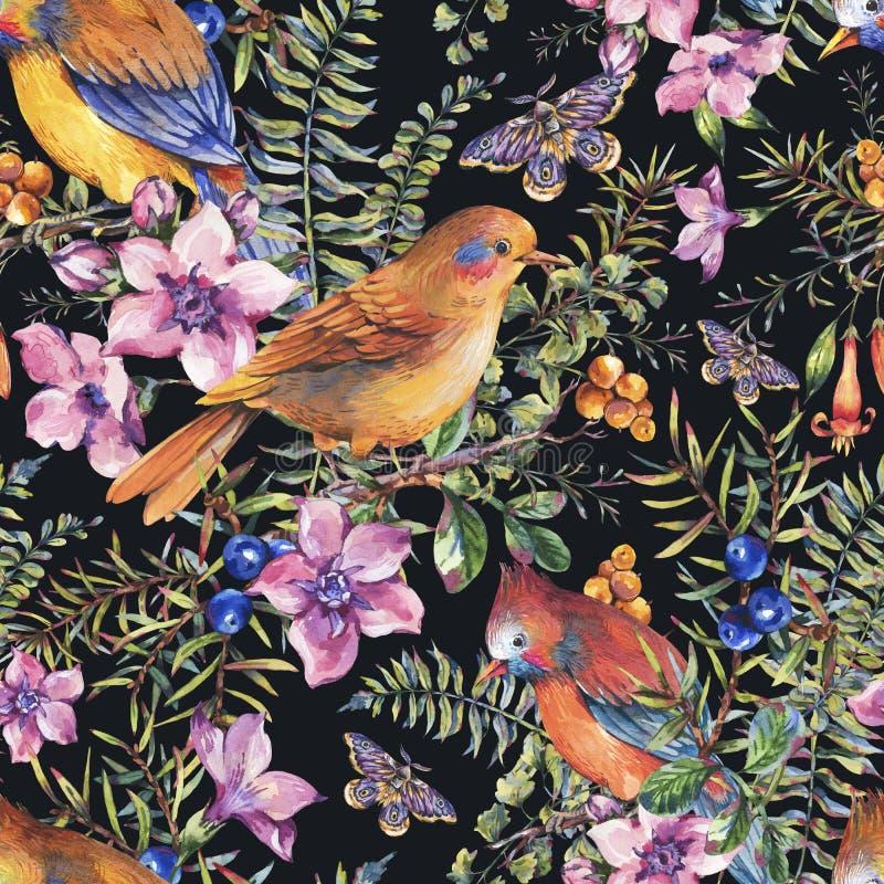 Aquarellsommerweinleseblumenwaldnahtloses Muster mit V?geln, Beeren, Motte, Farn, rosa Blumen lizenzfreie abbildung