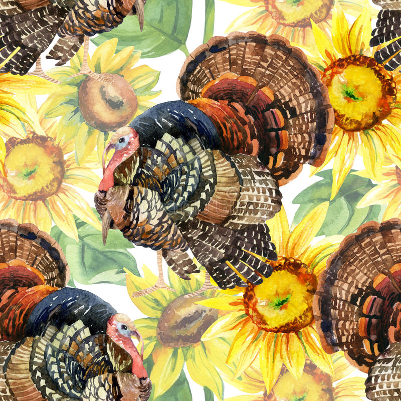 Aquarelltruthahn mit nahtlosem Muster der Sonnenblumen auf dem weißen Hintergrund lizenzfreie abbildung
