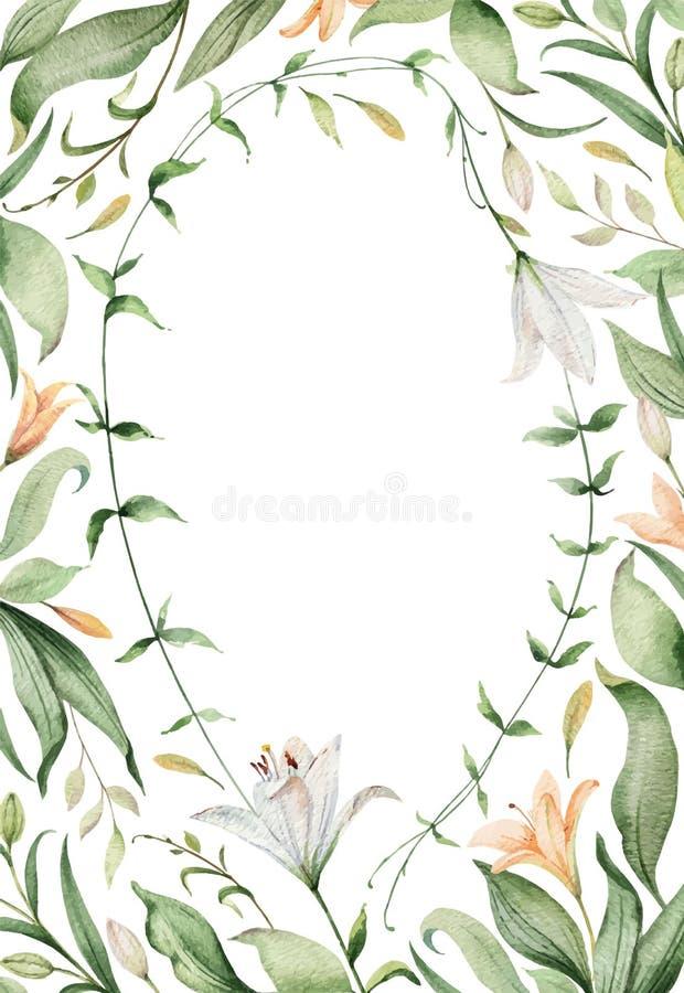 Aquarellvektorkarte von Lilienblumen und von gr?nen Bl?ttern stock abbildung