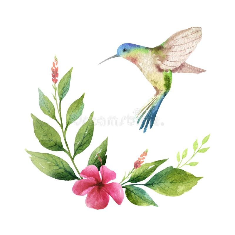 Aquarellvektorkartengrünblätter, -kolibri und -blumen lokalisiert auf weißem Hintergrund stock abbildung