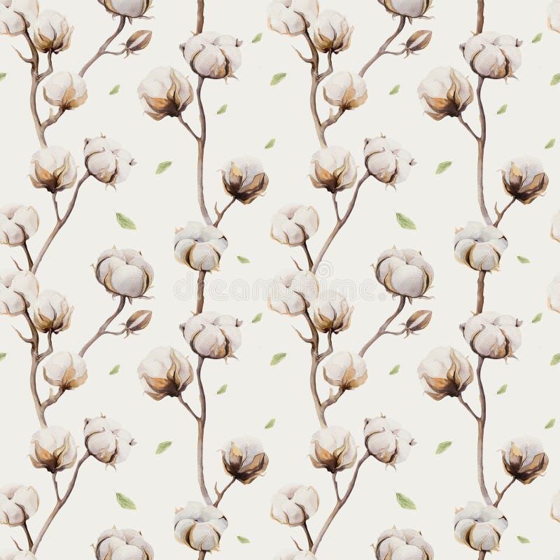 Aquarellweinlesehintergrund mit den Zweigen und Baumwolle blüht boho lizenzfreie abbildung