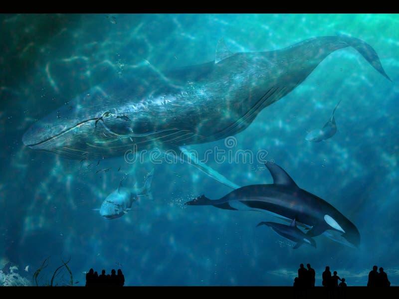 Aquarium illustration libre de droits