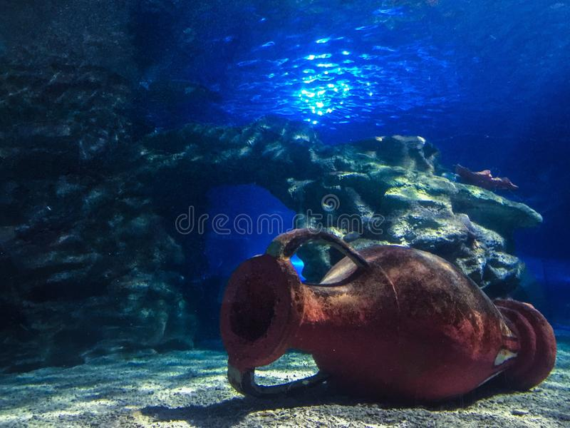 Aquarium stockfotos