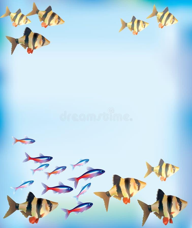 Aquarium Background Royalty Free Stock Images