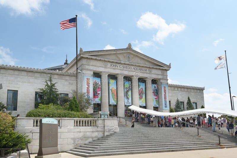 Download Aquarium Chicago de Shedd photo stock éditorial. Image du intérieur - 77158018